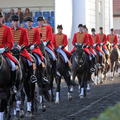 Hengstparade Quadrille